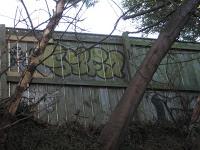 Graffiti vandals arrested